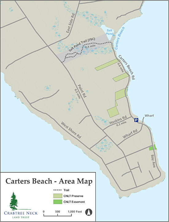 Carter's Beach trail map