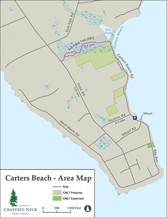 Carters Beach 2021 Trail map