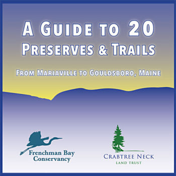 A Guide to 20 Preserves and Trails
